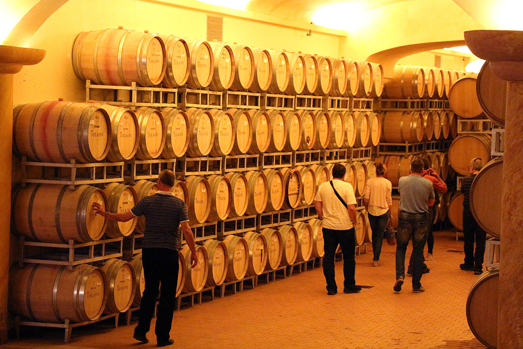 The Divine Wine tours in Tuscany