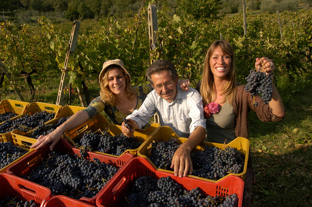 The Divine Wine custom tours in Tuscany