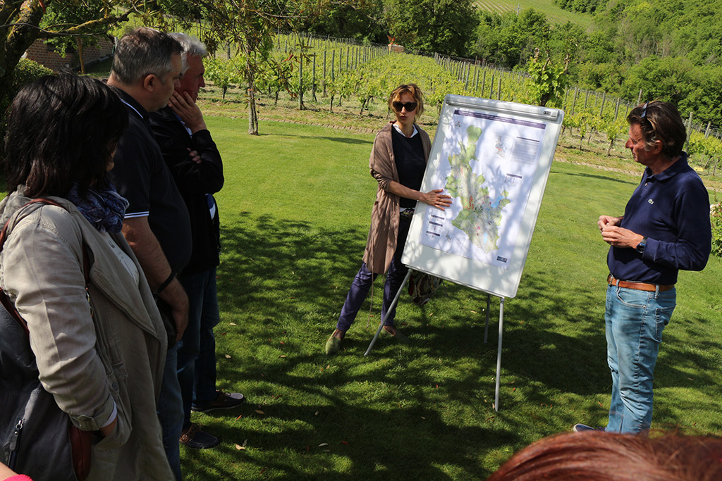 4-The-Divine-Wine-tours-in-Umbria-Orvieto