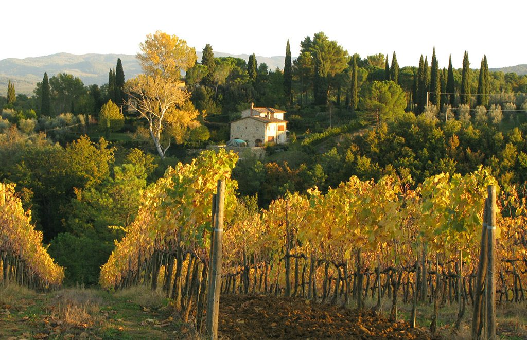 6-The-Divine-Wine-tours-in-Tuscany-Chianti