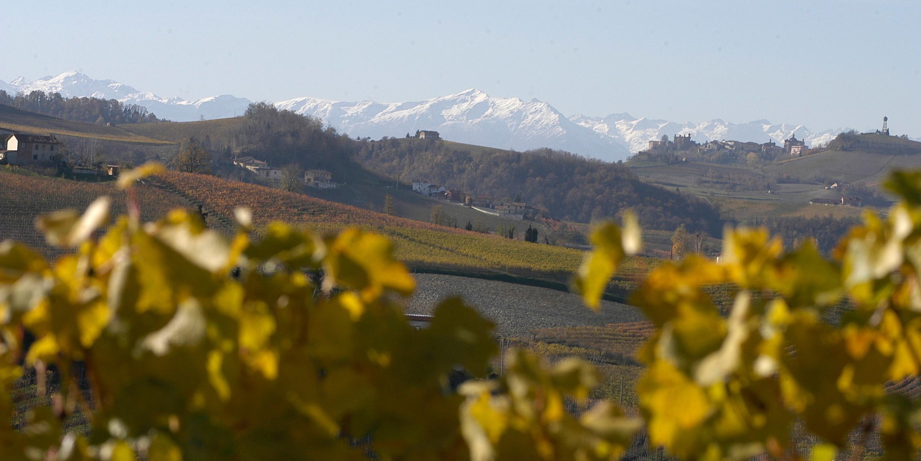 2 Barolo Langhe Piemonte