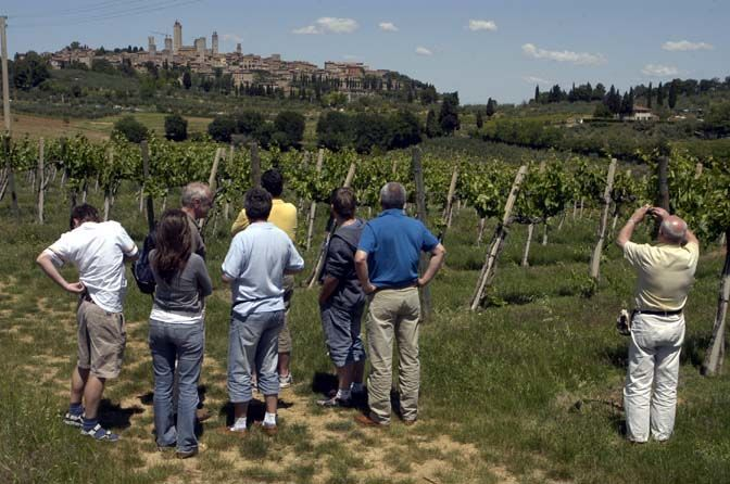 6 standard tailor made DiVine wine&tourism tours_RID