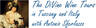 The DiVine Wine Tours in Tuscany and Italy with Antonio Sferlazzo