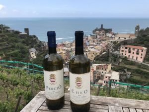 May 2019,The DiVine Wine Tour in Tuscany on the hills of Lucca and 5Terre